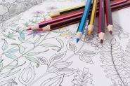 A vos crayons pour le plus beau des dessins!