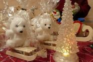 Des oursons blancs sur des luges : c'est de saison!