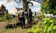Des centaines de variétés de plants et d'arbustes ont fait la joie des jardiniers