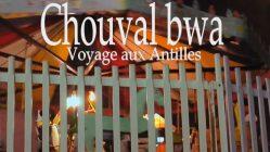 chouval-bwa-martinique-joselita-claude-germany-tmavision